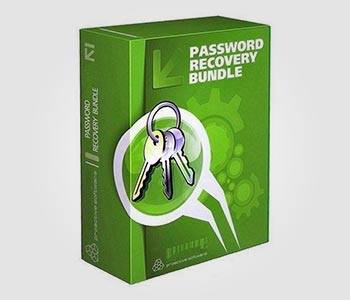 Password Recovery Solution